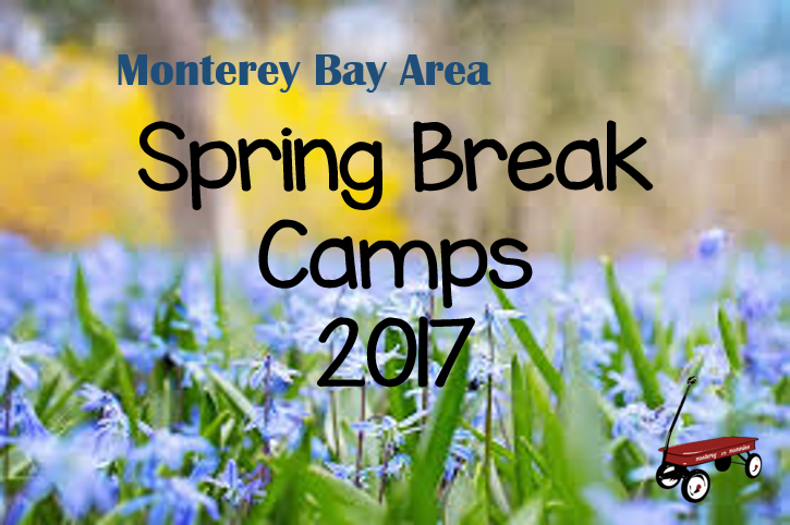 Spring Break Camps 2017-Monterey Mommies
